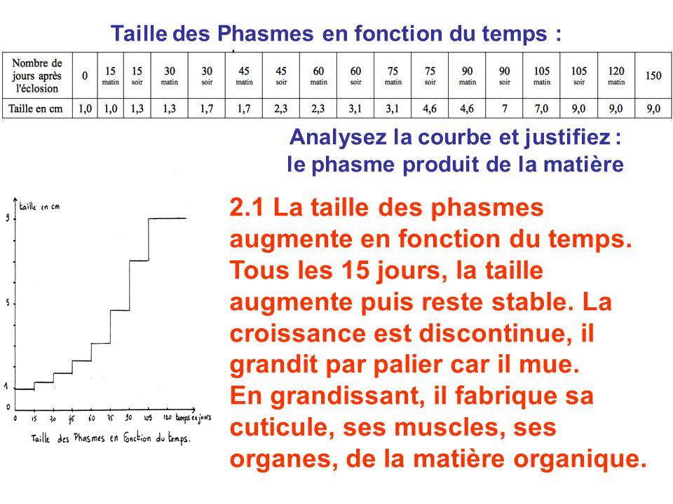 Analysez la courbe et justifiez : le phasme produit de la matière 2.1 La taille des phasmes augmente en fonction du temps. Tous les 15 jours, la taill