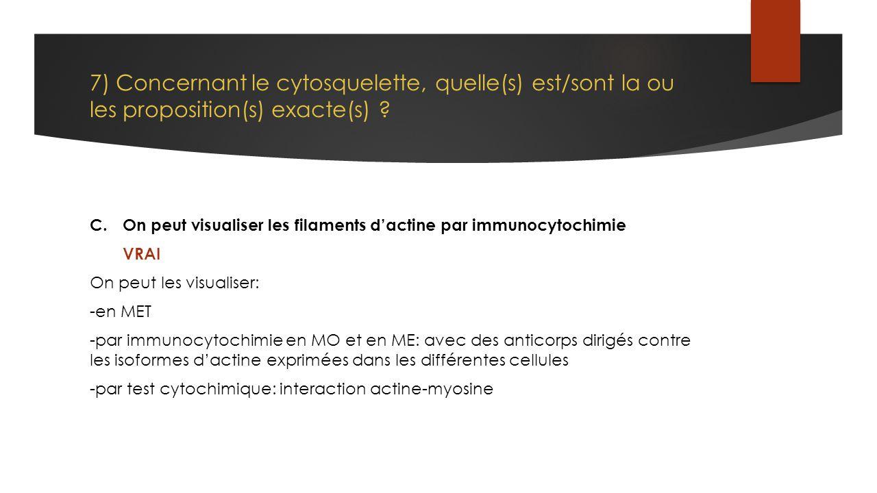 7) Concernant le cytosquelette, quelle(s) est/sont la ou les proposition(s) exacte(s) ? C.On peut visualiser les filaments d'actine par immunocytochim