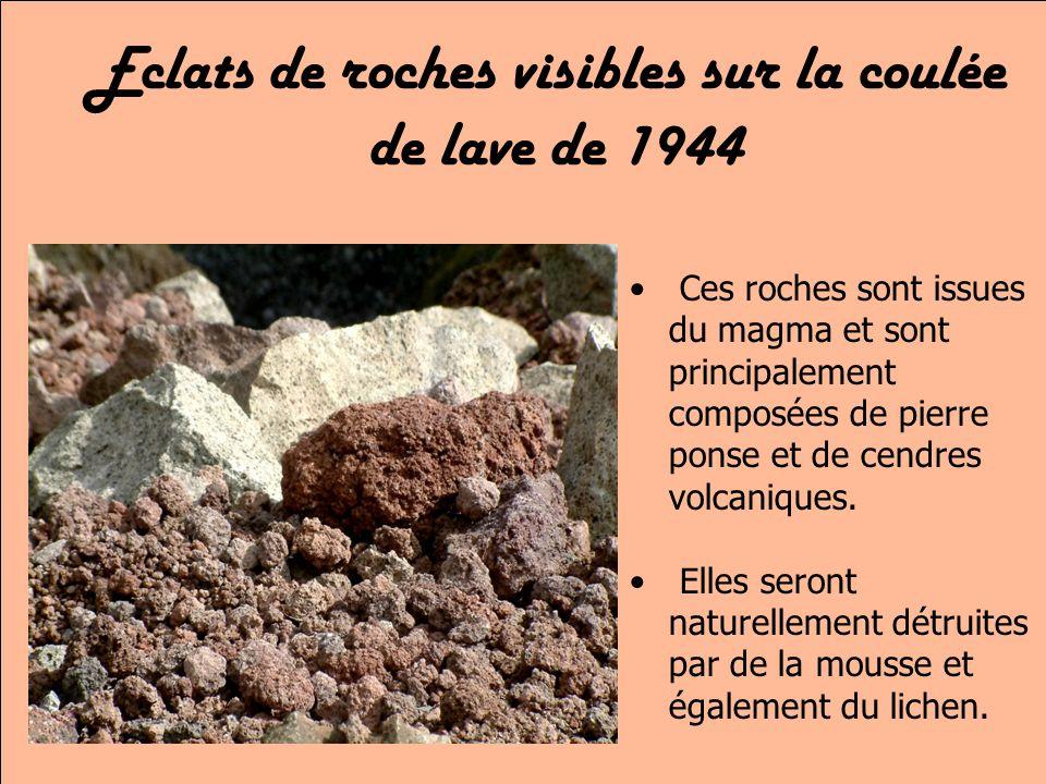 Eclats de roches visibles sur la coulée de lave de 1944 Ces roches sont issues du magma et sont principalement composées de pierre ponse et de cendres volcaniques.