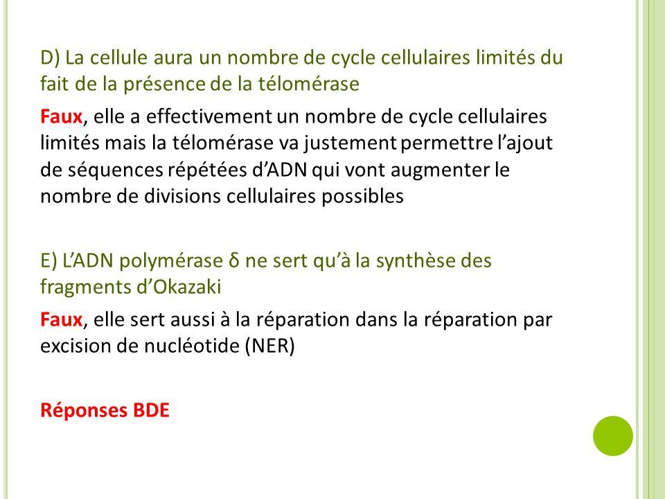 D) La cellule aura un nombre de cycle cellulaires limités du fait de la présence de la télomérase Faux, elle a effectivement un nombre de cycle cellulaires limités mais la télomérase va justement permettre l'ajout de séquences répétées d'ADN qui vont augmenter le nombre de divisions cellulaires possibles E) L'ADN polymérase δ ne sert qu'à la synthèse des fragments d'Okazaki Faux, elle sert aussi à la réparation dans la réparation par excision de nucléotide (NER) Réponses BDE