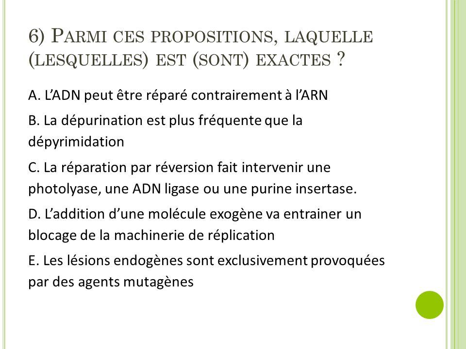 6) P ARMI CES PROPOSITIONS, LAQUELLE ( LESQUELLES ) EST ( SONT ) EXACTES ? A. L'ADN peut être réparé contrairement à l'ARN B. La dépurination est plus