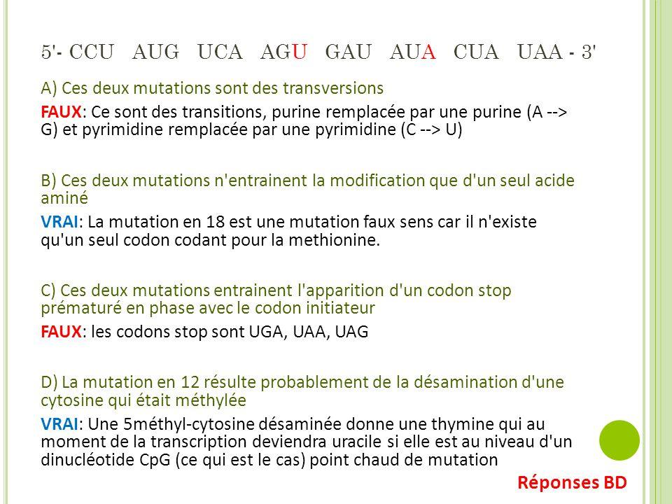 5 - CCU AUG UCA AGU GAU AUA CUA UAA - 3 A) Ces deux mutations sont des transversions FAUX: Ce sont des transitions, purine remplacée par une purine (A --> G) et pyrimidine remplacée par une pyrimidine (C --> U) B) Ces deux mutations n entrainent la modification que d un seul acide aminé VRAI: La mutation en 18 est une mutation faux sens car il n existe qu un seul codon codant pour la methionine.