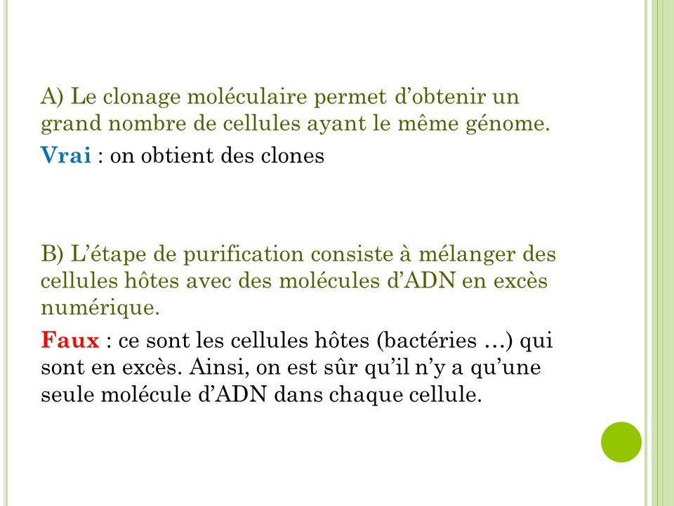 A) Le clonage moléculaire permet d'obtenir un grand nombre de cellules ayant le même génome. Vrai : on obtient des clones B) L'étape de purification c