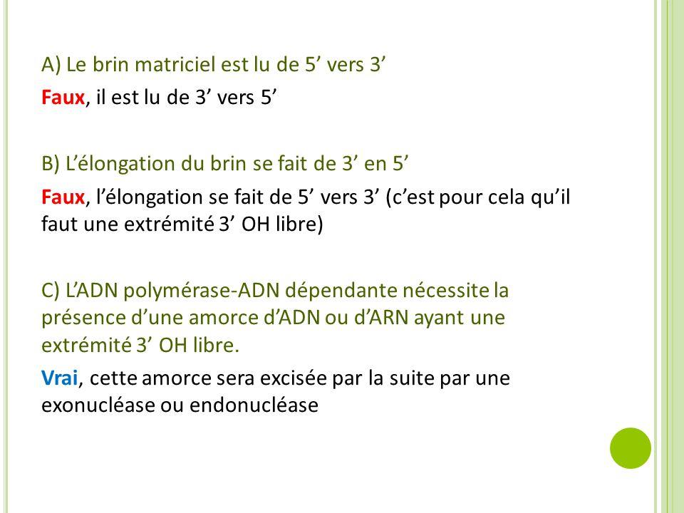 A) Le brin matriciel est lu de 5' vers 3' Faux, il est lu de 3' vers 5' B) L'élongation du brin se fait de 3' en 5' Faux, l'élongation se fait de 5' v