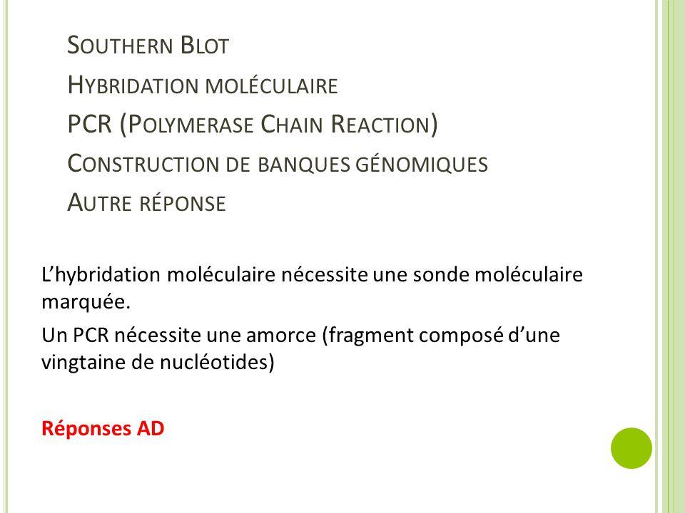 S OUTHERN B LOT H YBRIDATION MOLÉCULAIRE PCR (P OLYMERASE C HAIN R EACTION ) C ONSTRUCTION DE BANQUES GÉNOMIQUES A UTRE RÉPONSE L'hybridation moléculaire nécessite une sonde moléculaire marquée.