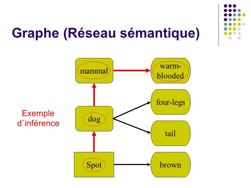 Graphe (Réseau sémantique) mammal dog Spot warm- blooded four-legs tail brown Exemple d`inférence