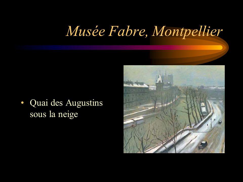 Musée Fabre, Montpellier Quai des Augustins sous la neige