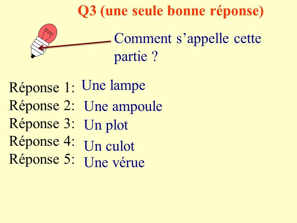 Q2 (une seule bonne réponse) Comment s'appelle cette partie ? Réponse 1: Réponse 2: Réponse 3: Réponse 4: Réponse 5: Une lampe Une ampoule Un plot Un