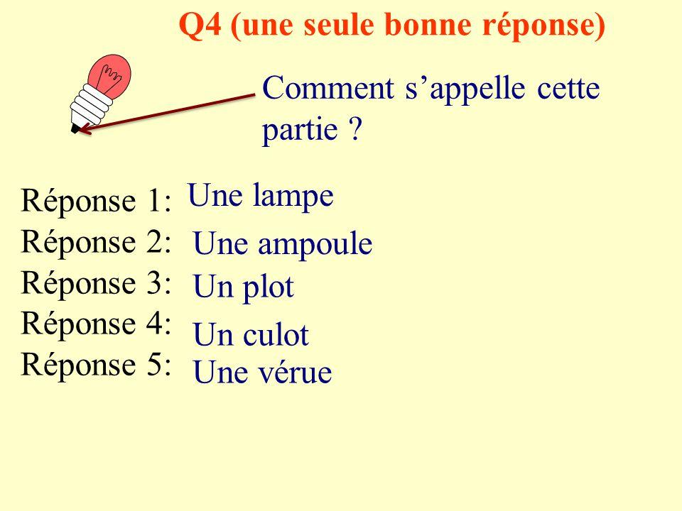 Q3 (une seule bonne réponse) Comment s'appelle cette partie ? Réponse 1: Réponse 2: Réponse 3: Réponse 4: Réponse 5: Une lampe Une ampoule Un plot Un