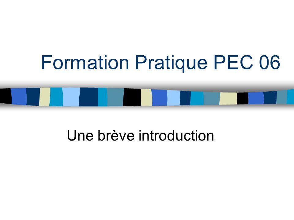 Formation Pratique PEC 06 Une brève introduction