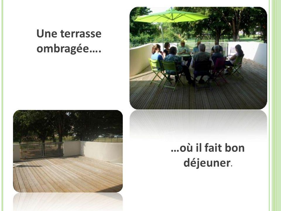 Une terrasse ombragée…. …où il fait bon déjeuner.
