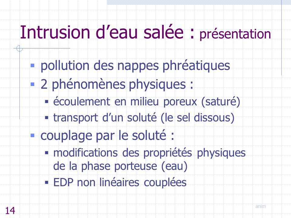 Intrusion d'eau salée : présentation  pollution des nappes phréatiques  2 phénomènes physiques :  écoulement en milieu poreux (saturé)  transport