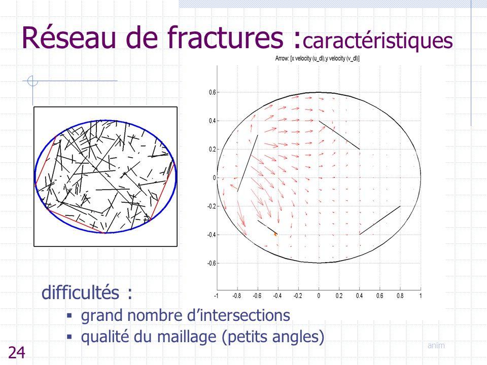 anim difficultés :  grand nombre d'intersections  qualité du maillage (petits angles) Réseau de fractures : caractéristiques 24