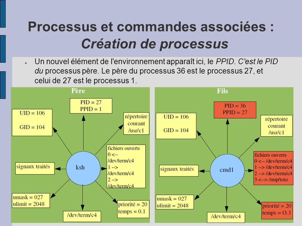 Processus et commandes associées : Création de processus ● Un nouvel élément de l'environnement apparaît ici, le PPID. C'est le PID du processus père.