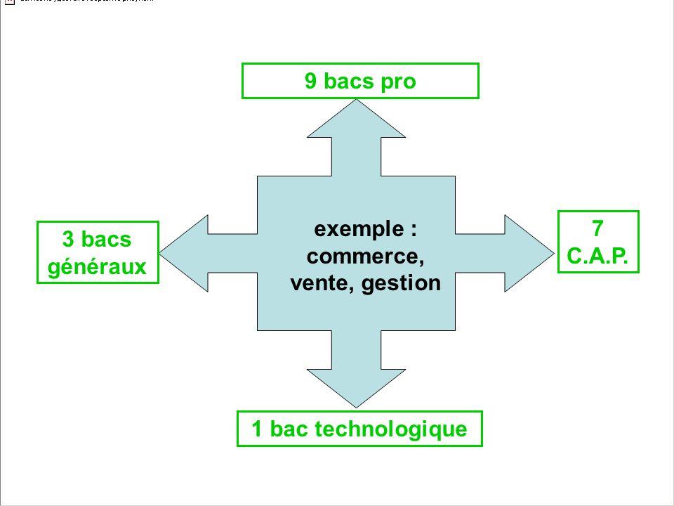 exemple : commerce, vente, gestion 9 bacs pro 1 bac technologique 7 C.A.P. 3 bacs généraux