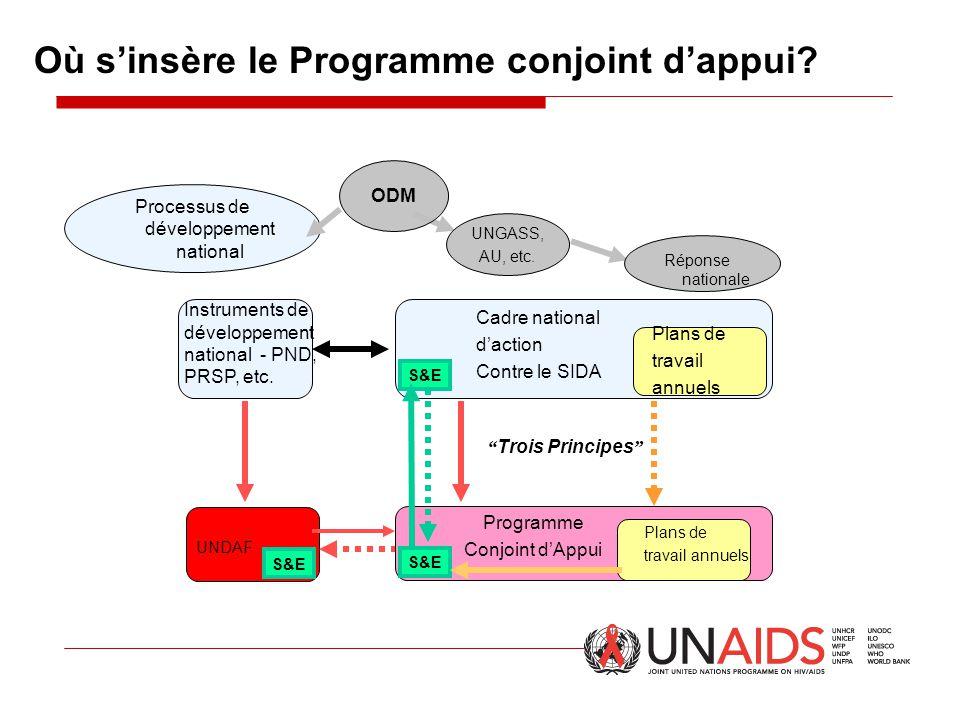 """Où s'insère le Programme conjoint d'appui? UNDAF S&E """" Trois Principes """" Processus de développement national UNGASS, AU, etc. S&E ODM Instruments de d"""