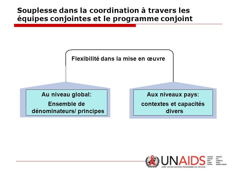 Souplesse dans la coordination à travers les équipes conjointes et le programme conjoint Au niveau global: Ensemble de dénominateurs/ principes Aux ni