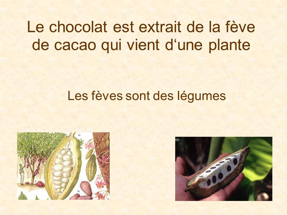 Diaporama PPS réalisé pour http://www.diaporamas-a-la-con.com http://www.diaporamas-a-la-con.com Toute la vérité à propos du Chocolat