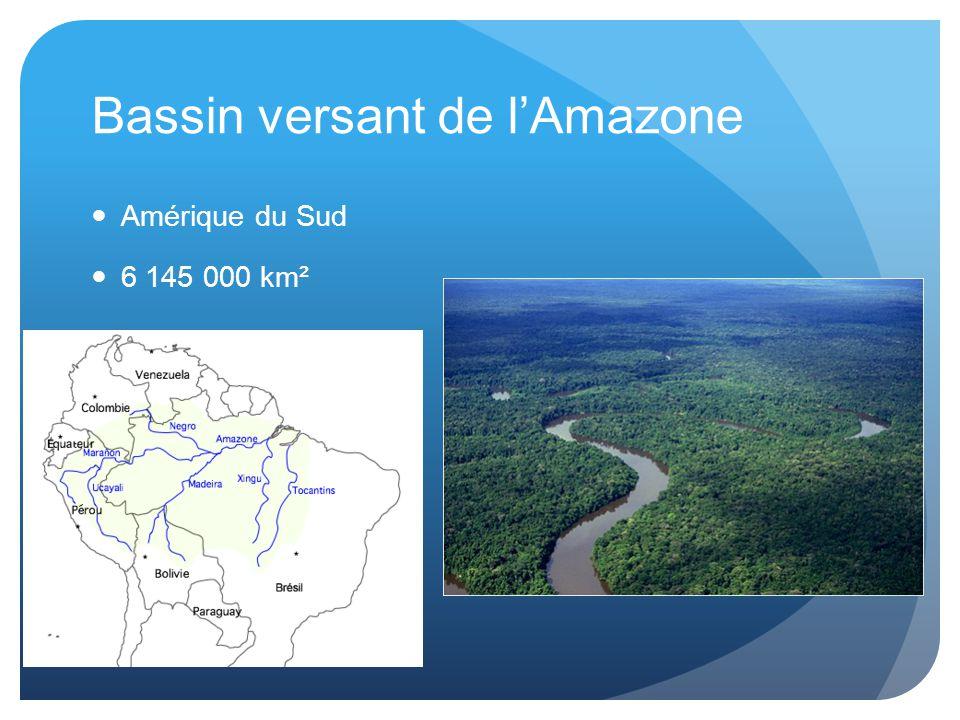 Bassin versant de l'Amazone Amérique du Sud 6 145 000 km²