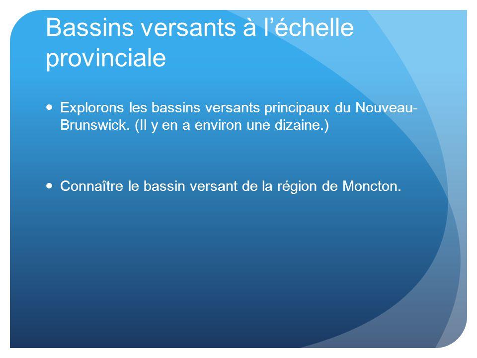 Bassins versants à l'échelle provinciale Explorons les bassins versants principaux du Nouveau- Brunswick.