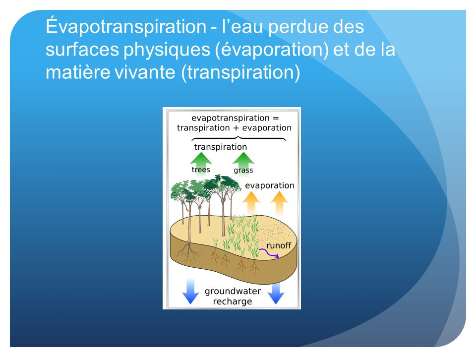 Évapotranspiration - l'eau perdue des surfaces physiques (évaporation) et de la matière vivante (transpiration)
