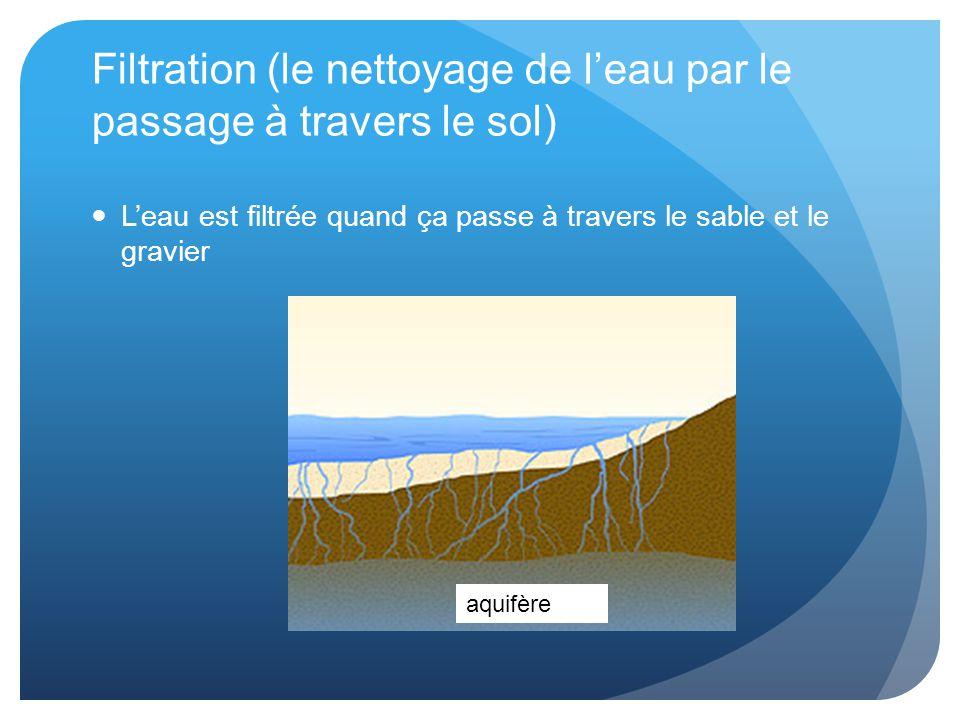 Filtration (le nettoyage de l'eau par le passage à travers le sol) L'eau est filtrée quand ça passe à travers le sable et le gravier aquifère
