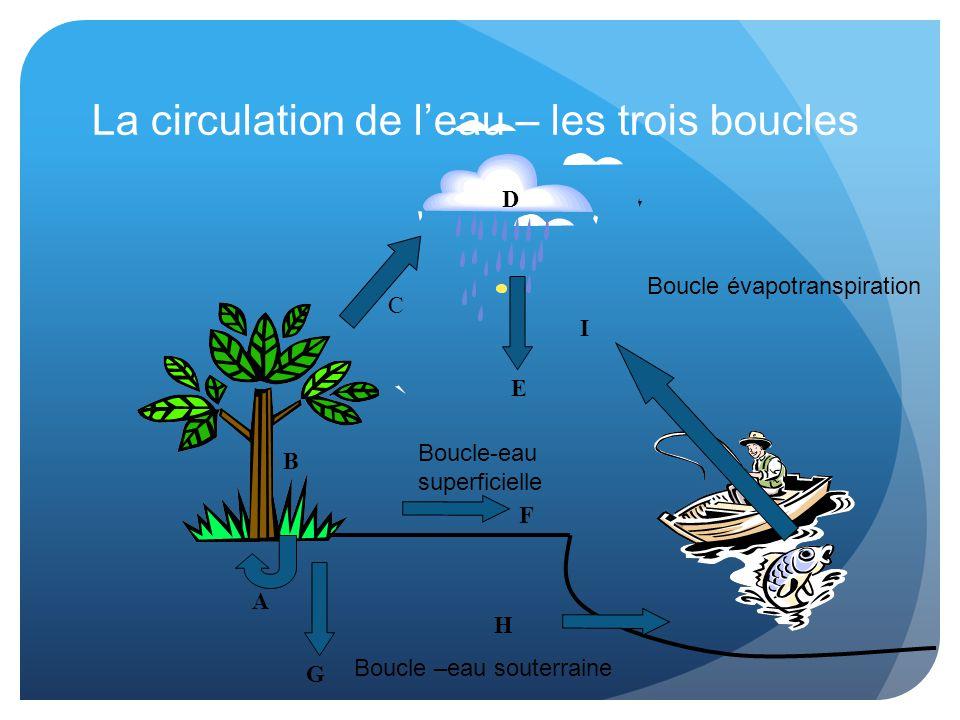 A B G I F Boucle –eau souterraine Boucle-eau superficielle Boucle évapotranspiration C E D H La circulation de l'eau – les trois boucles