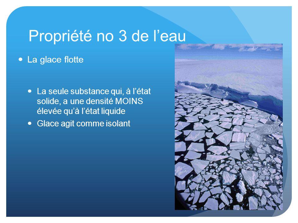 Propriété no 3 de l'eau La glace flotte La seule substance qui, à l'état solide, a une densité MOINS élevée qu'à l'état liquide Glace agit comme isolant