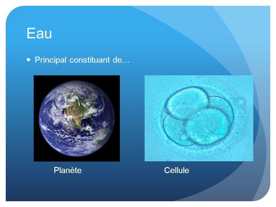 Eau Principal constituant de… PlanèteCellule