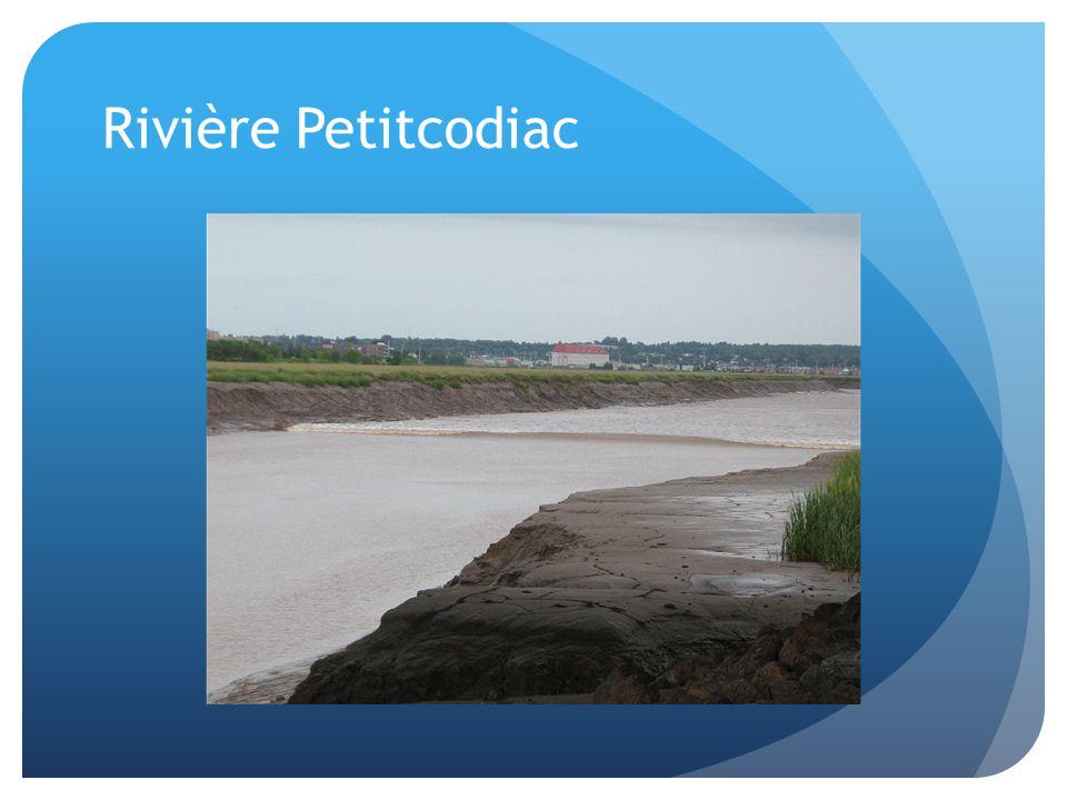 Rivière Petitcodiac