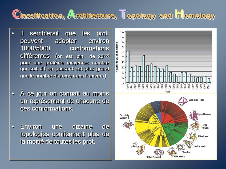 C lassification, A rchitecture, T opology and H omology Il semblerait que les prot. peuvent adopter environ 1000/5000 conformations différentes. ( on