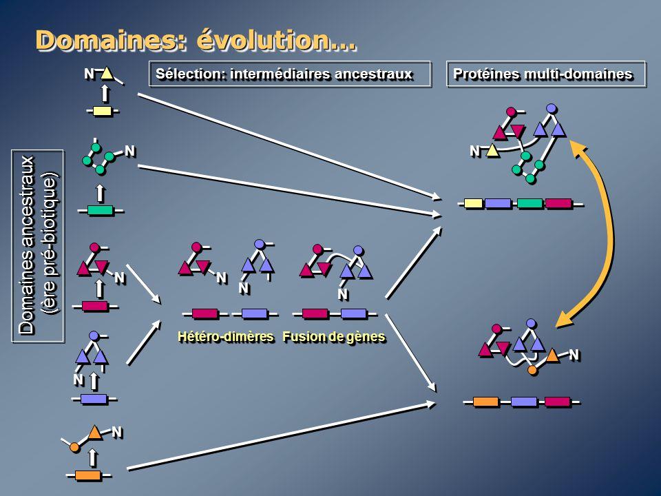 Domaines: évolution… NN NN NN NN NN NN NN NN NN NN Domaines ancestraux (ère pré-biotique) (ère pré-biotique) Domaines ancestraux (ère pré-biotique) (è
