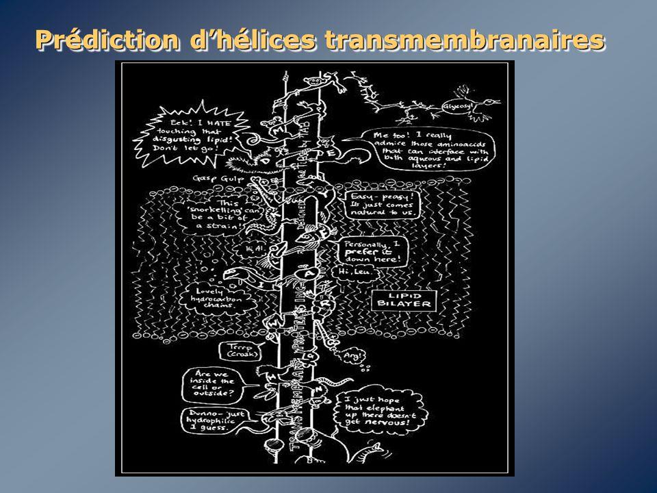 Prédiction d'hélices transmembranaires