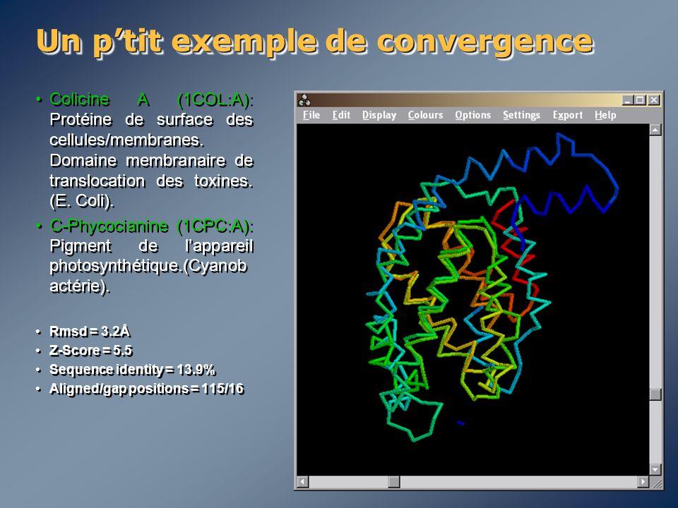 Un p'tit exemple de convergence Colicine A (1COL:A): Protéine de surface des cellules/membranes. Domaine membranaire de translocation des toxines. (E.
