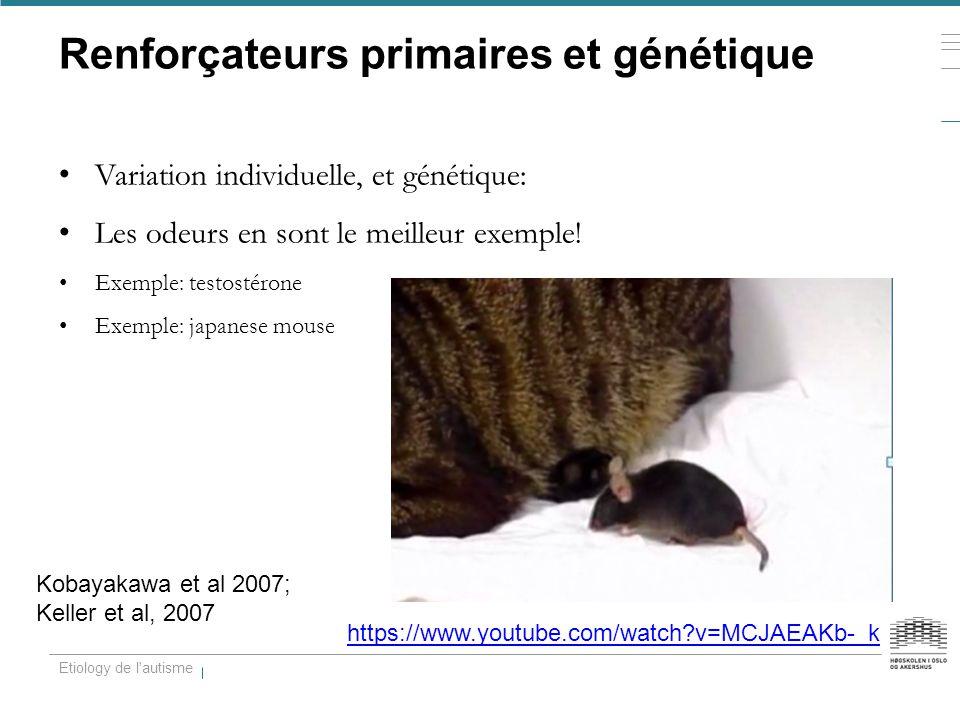 Renforçateurs primaires et génétique Variation individuelle, et génétique: Les odeurs en sont le meilleur exemple! Exemple: testostérone Exemple: japa