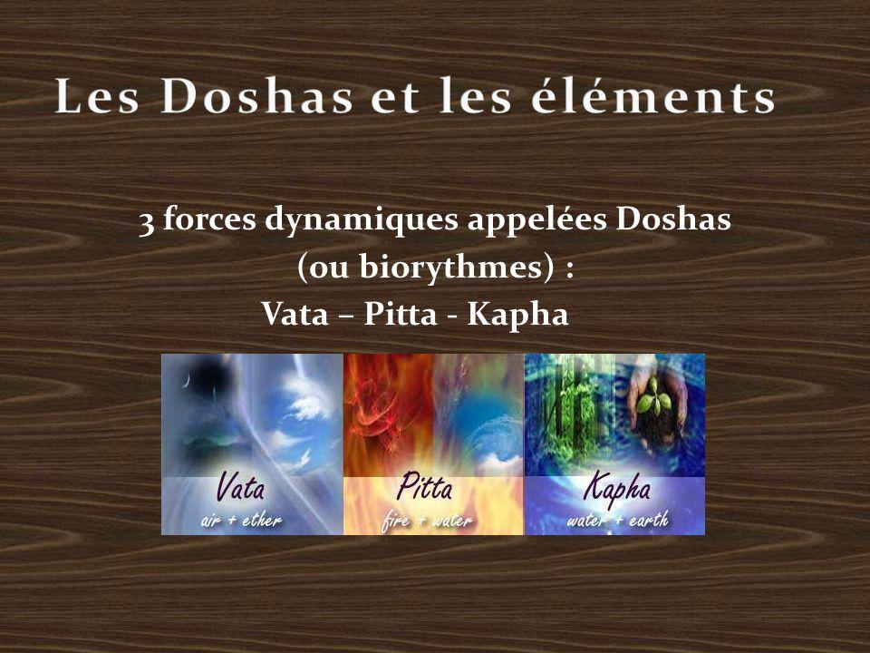 3 forces dynamiques appelées Doshas (ou biorythmes) : Vata – Pitta - Kapha