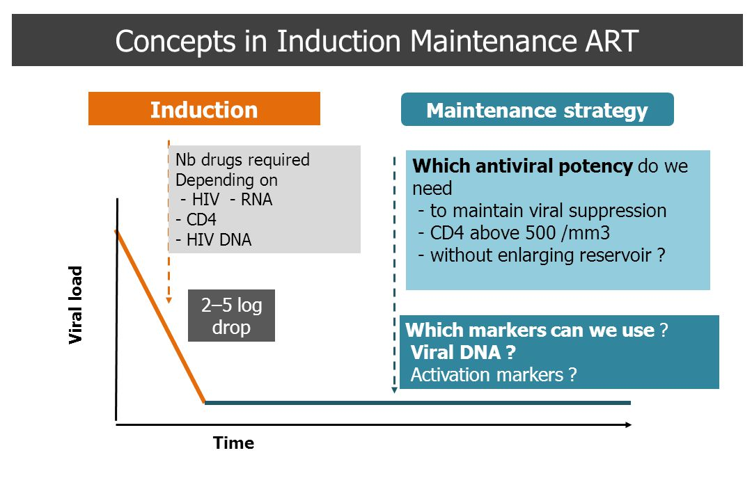 Time Viral load Induction Maintenance strategy Concepts in Induction Maintenance ART Nb drugs required Depending on - HIV - RNA - CD4 - HIV DNA Which antiviral potency do we need - to maintain viral suppression - CD4 above 500 /mm3 - without enlarging reservoir .
