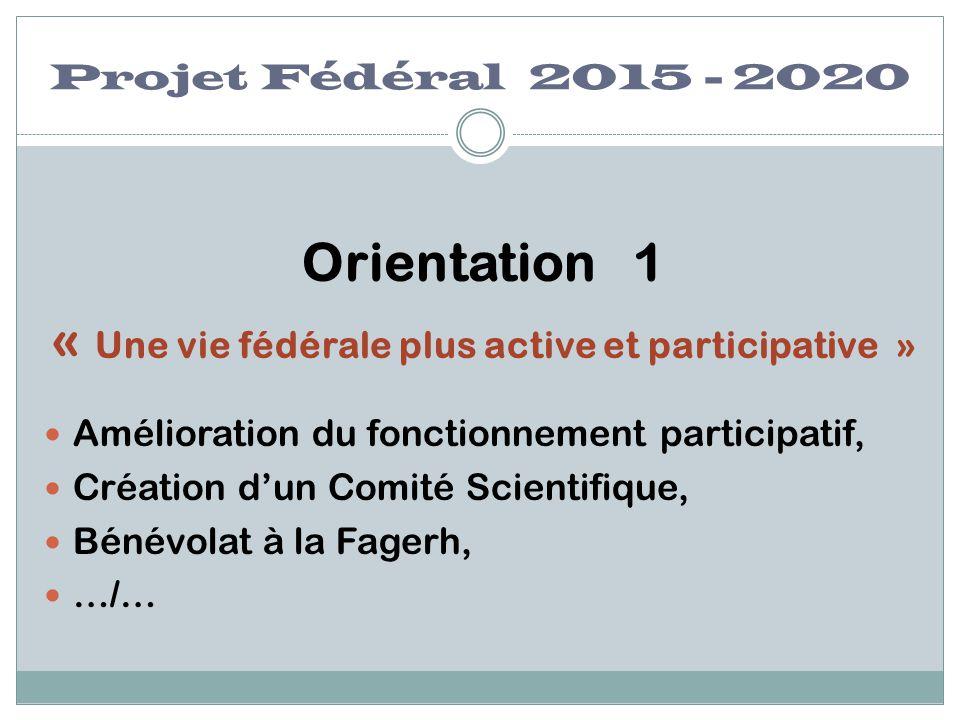 Projet Fédéral 2015 - 2020 Orientation 1 « Une vie fédérale plus active et participative » Amélioration du fonctionnement participatif, Création d'un