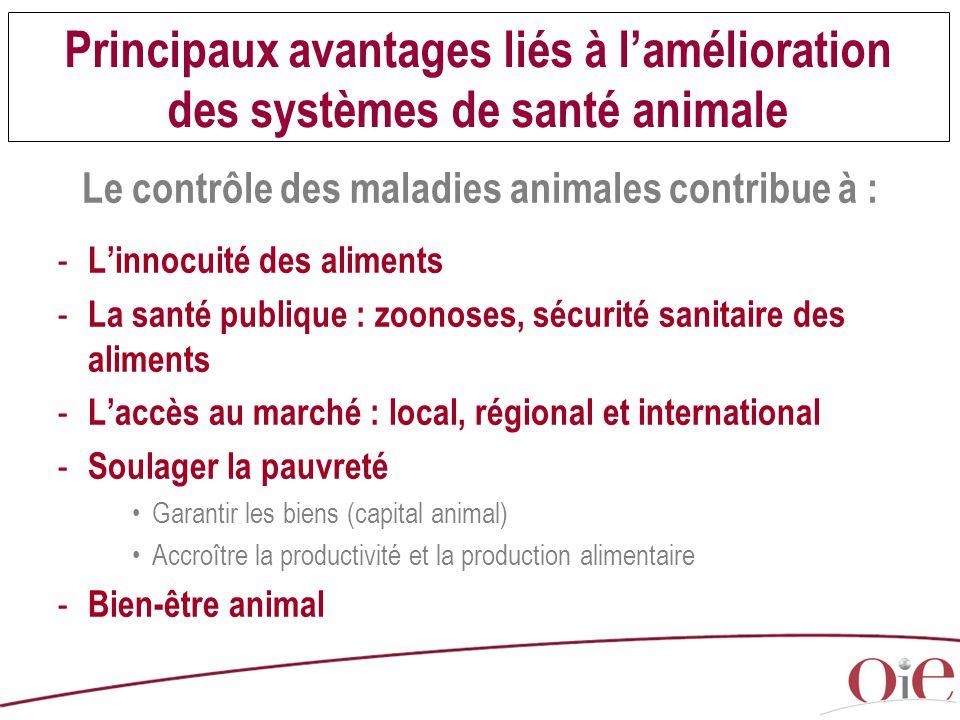 Principaux avantages liés à l'amélioration des systèmes de santé animale Le contrôle des maladies animales contribue à : - L'innocuité des aliments -