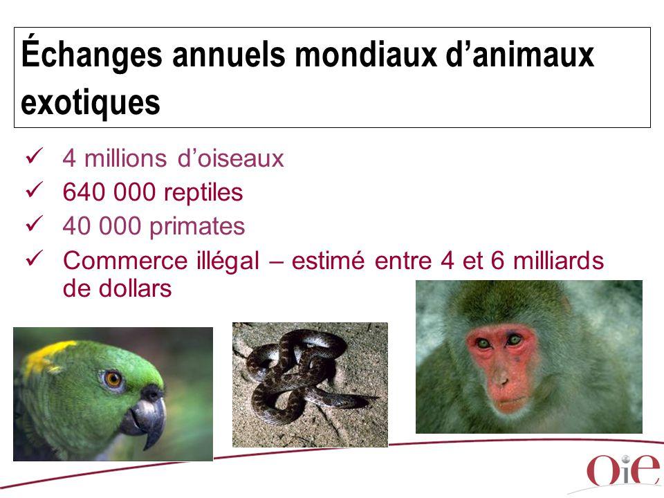Échanges annuels mondiaux d'animaux exotiques 4 millions d'oiseaux 640 000 reptiles 40 000 primates Commerce illégal – estimé entre 4 et 6 milliards d