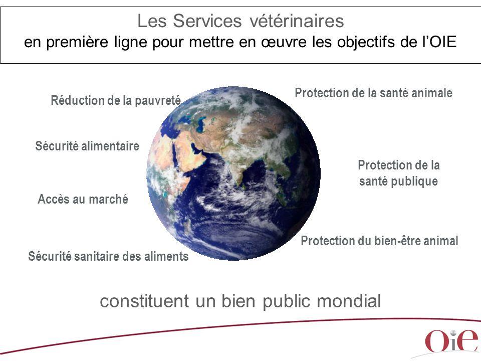 constituent un bien public mondial Réduction de la pauvreté Accès au marché Protection de la santé animale Protection du bien-être animal Protection d