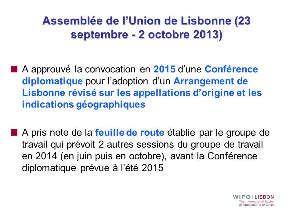 Assemblée de l'Union de Lisbonne (23 septembre - 2 octobre 2013) A approuvé la convocation en 2015 d'une Conférence diplomatique pour l'adoption d'un