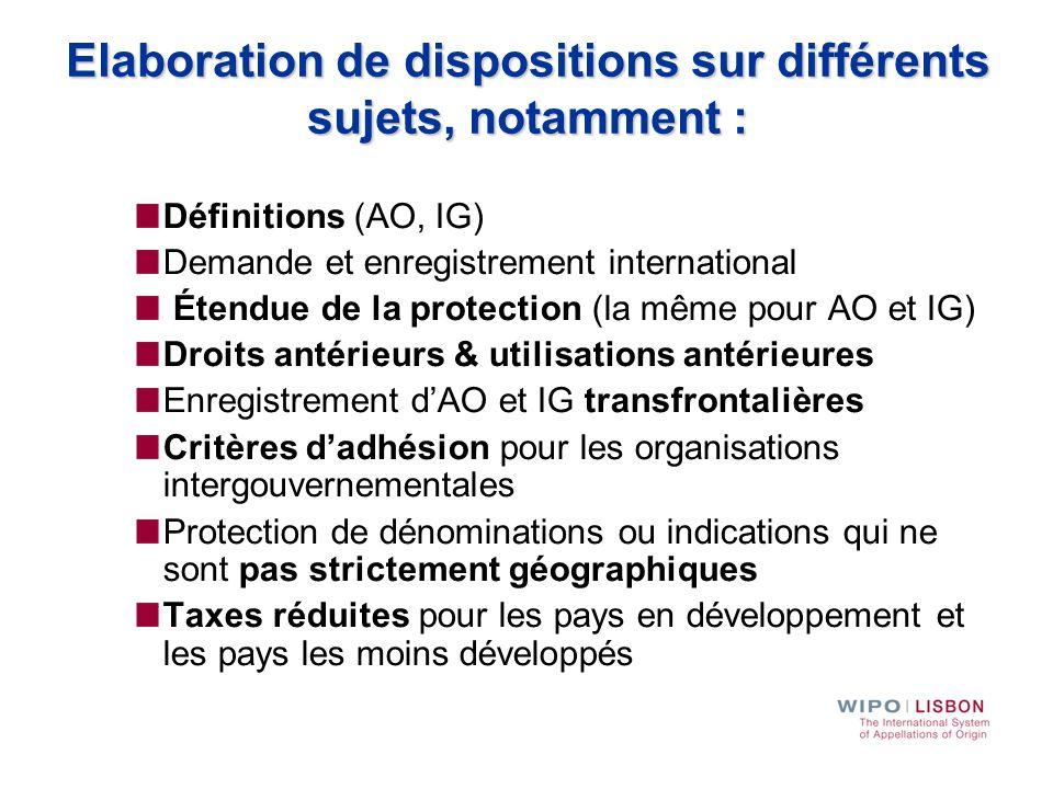 Elaboration de dispositions sur différents sujets, notamment : Définitions (AO, IG) Demande et enregistrement international Étendue de la protection (