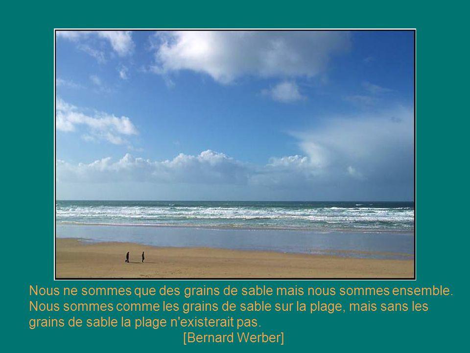 Apprends à écrire tes blessures dans le sable et à graver tes joies dans la pierre. [Anonyme]
