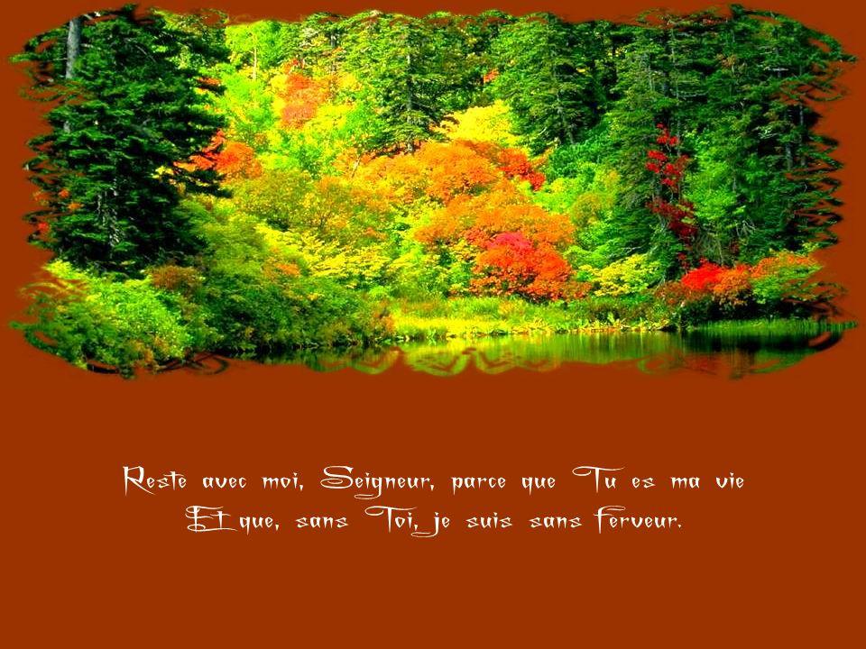 Reste avec moi, Seigneur, parce que je suis faible Et que j'ai besoin de Ta force Pour ne pas tomber si souvent.