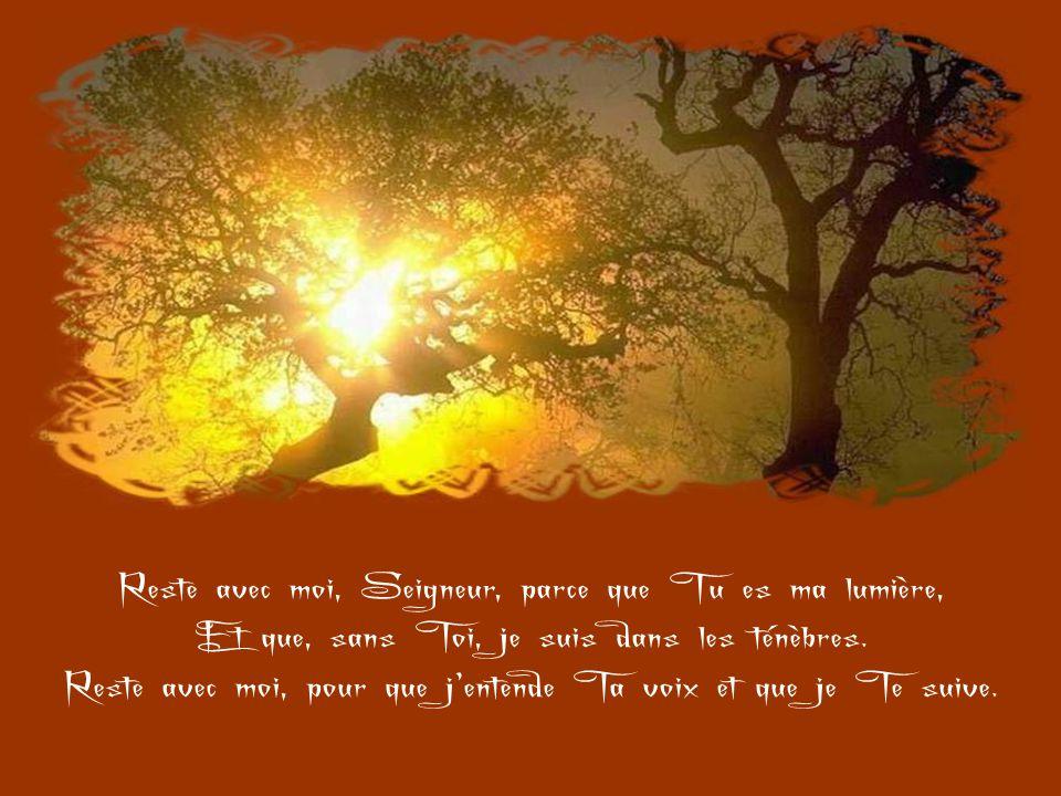 Reste avec moi, Seigneur, parce que Tu es ma vie Et que, sans Toi, je suis sans ferveur.