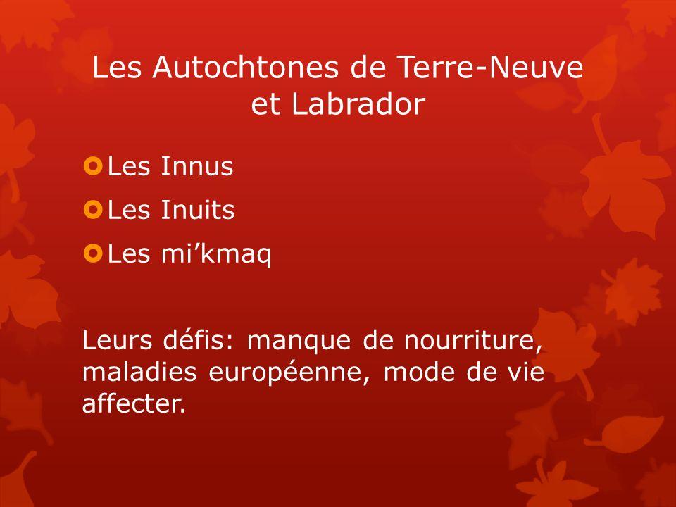 Les Autochtones de Terre-Neuve et Labrador  Les Innus  Les Inuits  Les mi'kmaq Leurs défis: manque de nourriture, maladies européenne, mode de vie affecter.