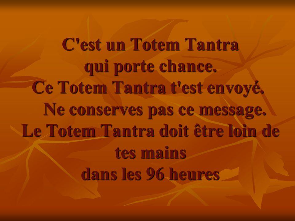 C'est un Totem Tantra qui porte chance. Ce Totem Tantra t'est envoyé. Ne conserves pas ce message. Le Totem Tantra doit être loin de tes mains dans le