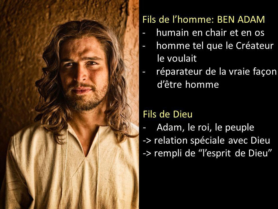 Fils de l'homme: BEN ADAM -humain en chair et en os -homme tel que le Créateur le voulait -réparateur de la vraie façon d'être homme Fils de Dieu -Ada