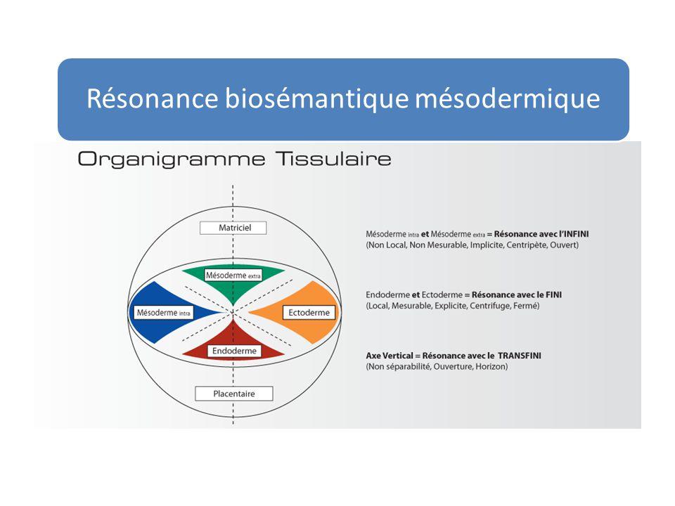 Ectoderme = Local = Divergent = Centrifuge = Analyse = Numérique Mésoderme = Non local = Convergent = Centripète = Catalyse = Analogique Embryologie ondulatoire